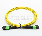 MPO束状光纤跳线